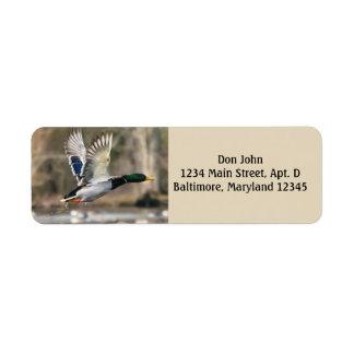 Étiquettes de adresse de retour de canard de vol