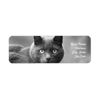 Étiquettes de adresse noirs et blancs de chat