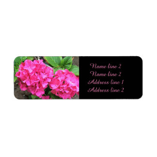 Étiquettes de adresse roses de mariage d'hortensia