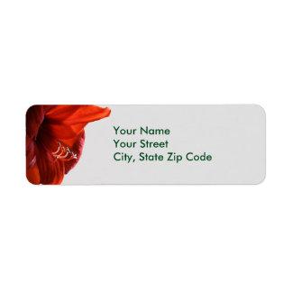 Étiquettes de adresse rouges de Noël de fleur