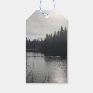 Étiquettes de cadeau de paysage