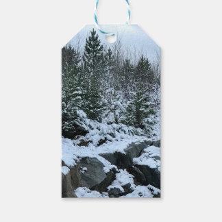 Étiquettes de cadeau du Michigan de paysage
