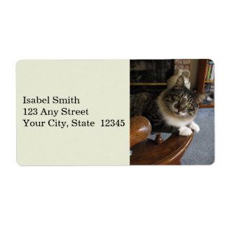 Étiquettes d'expédition semi-transparents de Kitty