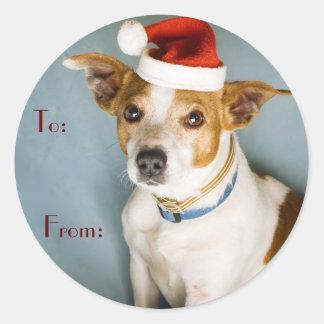 Étiquettes mignonnes de nom de chien de Noël Sticker Rond