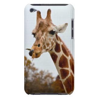 Étui Barely There iPod Photo affamée d'animaux sauvages de la girafe |