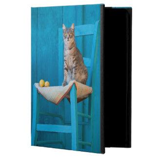 Étui iPad Air Chaton mignon de chat tigré sur une photo bleue de