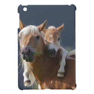 ÉTUI iPad MINI