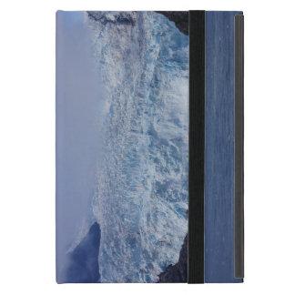 Étui iPad Mini Beauté gelée