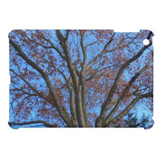 Étui iPad Mini Chêne dans un ciel bleu d'automne -
