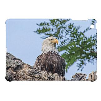 Étui iPad Mini Eagle chauve sur une branche d'arbre