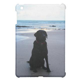 Étui iPad Mini Labrador noir sur une plage