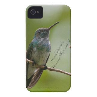 Étui iPhone 4 Colibri de palétuvier