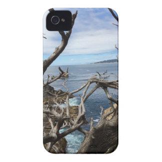 Étui iPhone 4 Mer la beauté