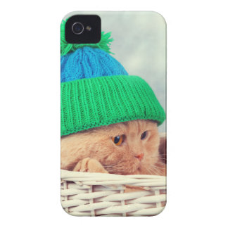 Étui iPhone 4 Miscellaneous - Cat With Woolly Hat Three