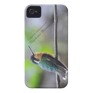 Étui iPhone 4 Mountaing Blanc-throated
