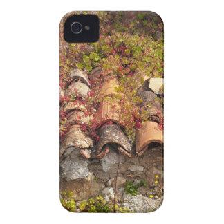 Étui iPhone 4 Toit vivant