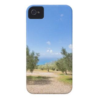 Étui iPhone 4 Verger avec les oliviers en mer en Grèce