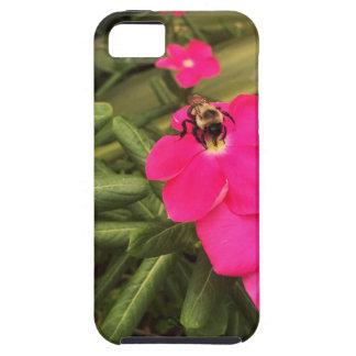 Étui iPhone 5 abeille