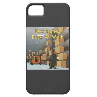 Étui iPhone 5 Cas drôle de l'iPhone 5 de tortues de boîte