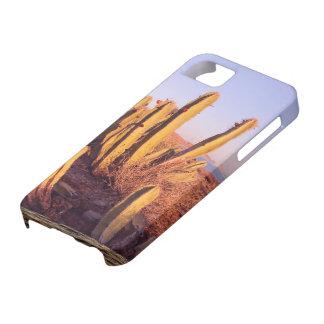 Étui iPhone 5 Sentez le désert