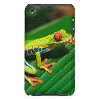 Étui iPod Touch Grenouille d'arbre aux yeux rouges de vert