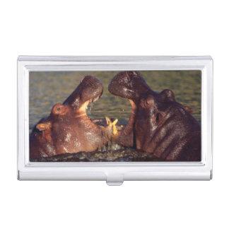 Étui Pour Cartes De Visite Taureaux d'hippopotame (hippopotame Amphibius)