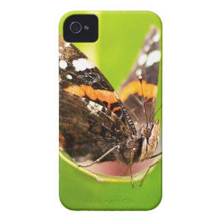 Étuis iPhone 4 Butterfly