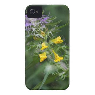 Étuis iPhone 4 Fleur d'un blé crêté de vache