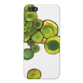 Étuis iPhone 5 Art abstrait de cellules vertes