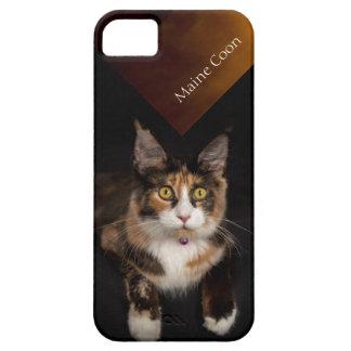 Étuis iPhone 5 Cas de téléphone de chat du Maine Coone