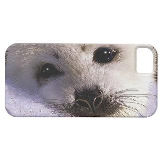 Étuis iPhone 5 Défenseur mignon de faune d'art d'imaginaire de