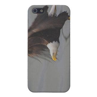 Étuis iPhone 5 Eagle chauve pêchant la caisse de point d'iPhone