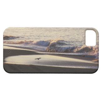 Étuis iPhone 5 La plage d'océan ondule la côte de la Californie