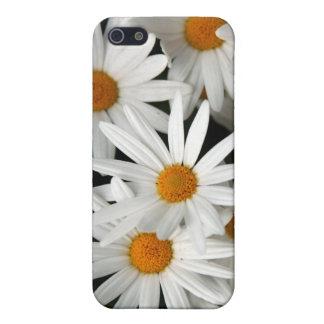 Étuis iPhone 5 Marguerites de floraison