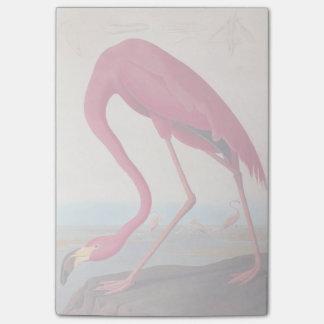 Ex-libris rose américain vintage d'Audubon de