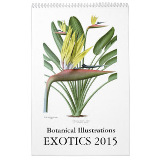 Exotics 2015 calendriers muraux