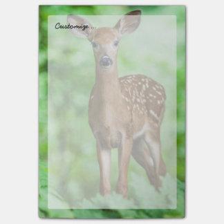 Faon de cerfs communs de bébé dans la forêt post-it®