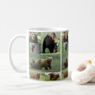 faune d'ours de tasses