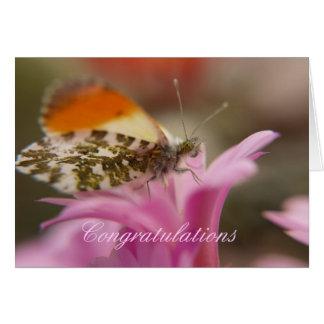 Félicitations Carte