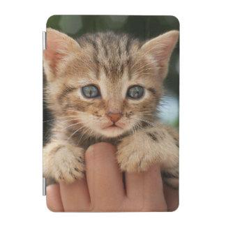 Fermez-vous du chaton protection iPad mini