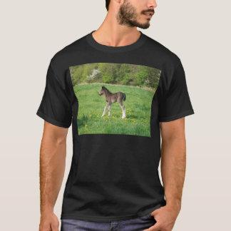 fétide t-shirt