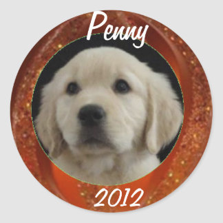 Feuille 2012 d'autocollant de penny sticker rond