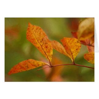 Feuille d'automne carte