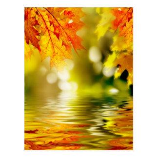 Feuille d'automne coloré se reflétant dans l'eau 2 carte postale