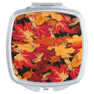 Feuille d'automne dans Brown jaune orange rouge