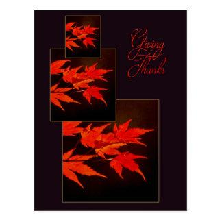 Feuille d'automne rouge de thanksgiving d'affaires carte postale