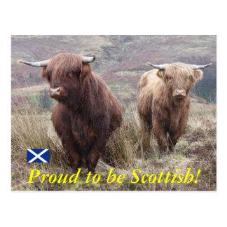 Fier d'être écossais ! carte postale
