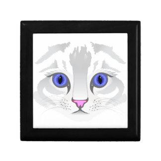Fin blanche mignonne de visage de chat tigré vers boîte à souvenirs