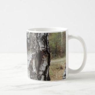 Fin d'arbre de bouleau vers le haut de tasse