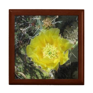 Fin de fleur de jaune de figue de Barbarie Boîtes À Babioles